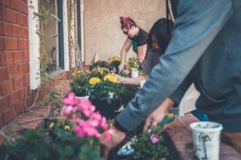 three people doing volunteer gardening work